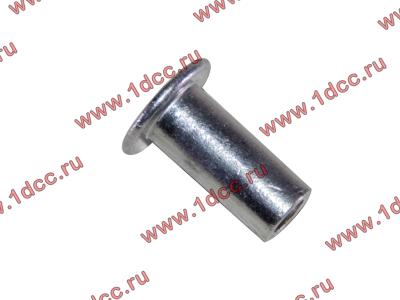 Заклепка алюминиевая 10х24 H2/H3 HOWO (ХОВО) 189000340068 AL фото 1 Ростов-на-Дону