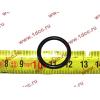 Кольцо уплотнительное форсунки резиновое H2/H3 HOWO (ХОВО) VG609070080 фото 2 Ростов-на-Дону