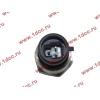 Датчик давления масла H3 HOWO (ХОВО) VG1540090035/1 фото 2 Ростов-на-Дону