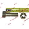 Болт M14х45 карданный с гайкой H2/H3 HOWO (ХОВО) Q151C1445 фото 2 Ростов-на-Дону