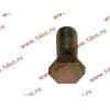 Болт пустотелый М12х1,25 (штуцер топливный) H HOWO (ХОВО) 90003962607 фото 3 Ростов-на-Дону