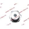 Датчик давления масла H3 HOWO (ХОВО) VG1540090035/1 фото 3 Ростов-на-Дону